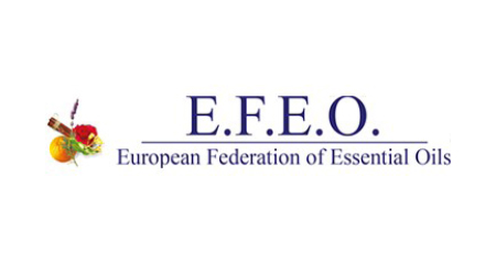 EFEO logo